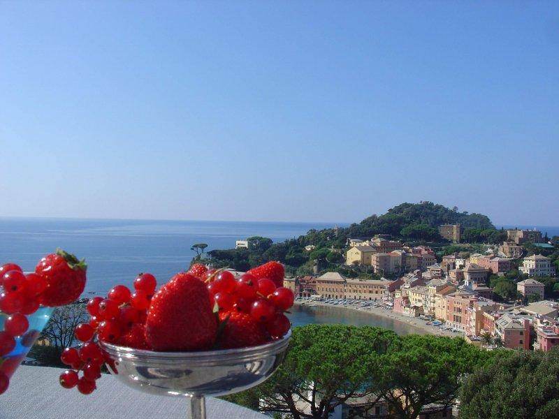 HOTEL VIS À VIS BAR PONTE ZEUS assaporare cocktails con una vista spettacolare sul mare