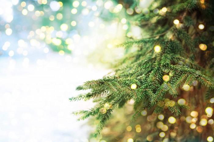 Buon Natale e Grazie !